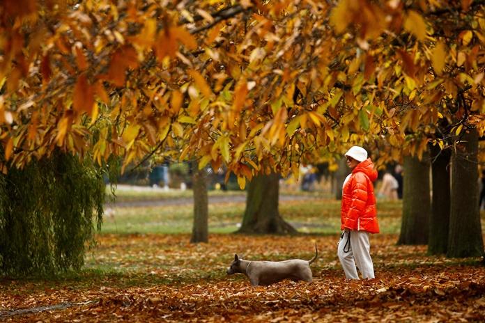 Naujos savaitės pradžioje trumpam atkeliaus sausesni ir vėsesni orai